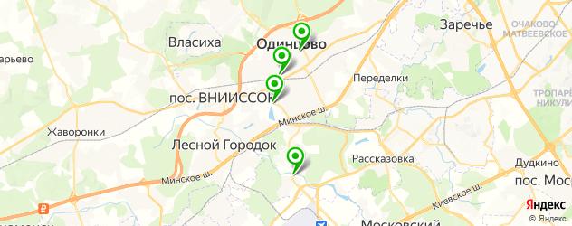 тюнинги ателье на карте Одинцово