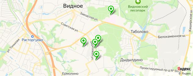 спортивные клубы на карте Видного