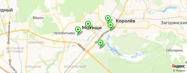 стадионы на карте Мытищ