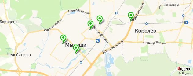 гимназии на карте Мытищ