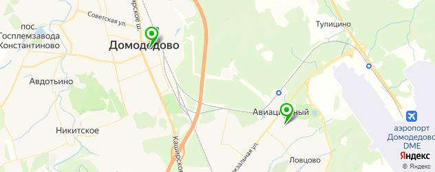лицеи на карте Домодедово