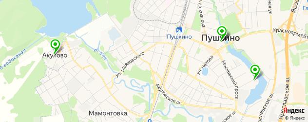 библиотеки на карте Пушкино