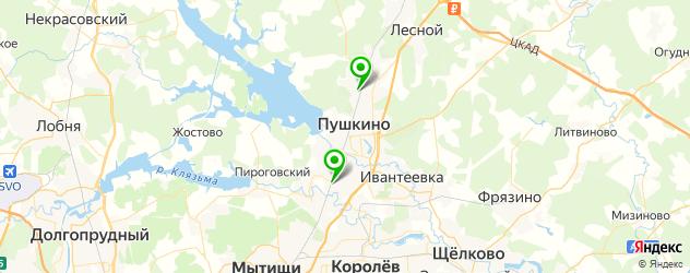 бани на карте Пушкино