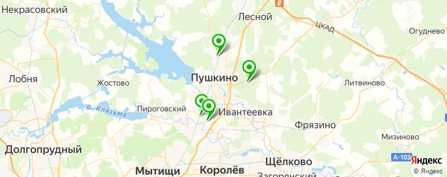 сауны на карте Пушкино