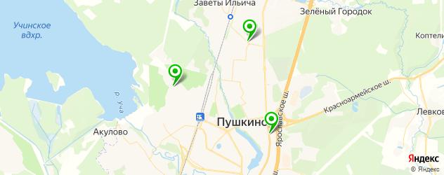 тюнинги ателье на карте Пушкино