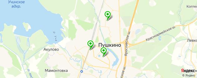 тату салон на карте Пушкино