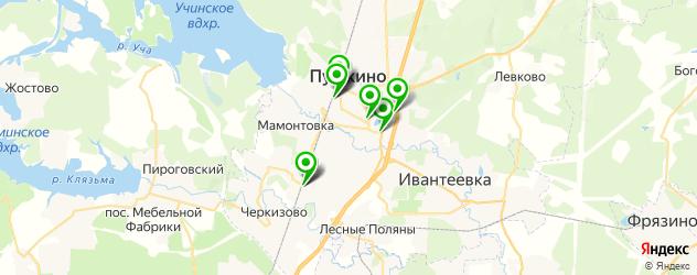 Доставка пиццы на карте Пушкино