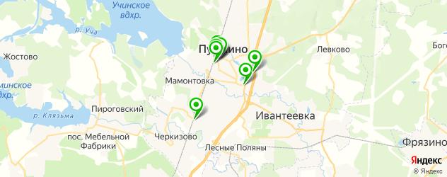 Доставка шашлыка на карте Пушкино