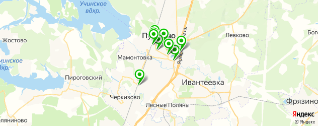 Доставка суши на карте Пушкино