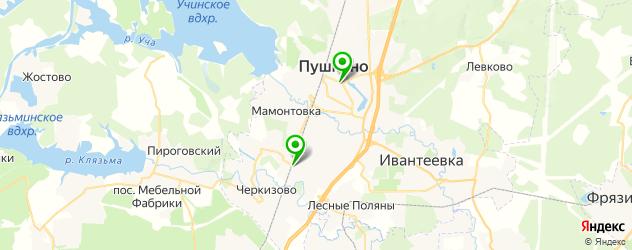 вегетарианские рестораны на карте Пушкино