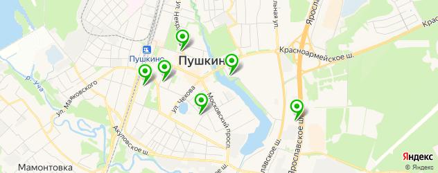 меховые ателье на карте Пушкино
