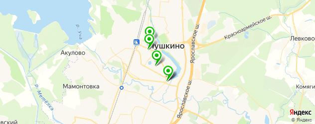 лаборатории анализов на карте Пушкино