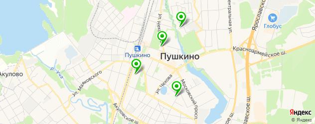 курсы на карте Пушкино
