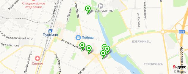 салоны бровей на карте Пушкино