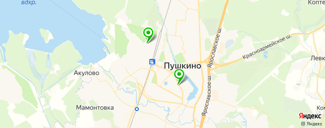 детские больницы на карте Пушкино