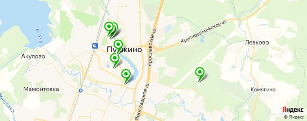 СПА салон на карте Пушкино