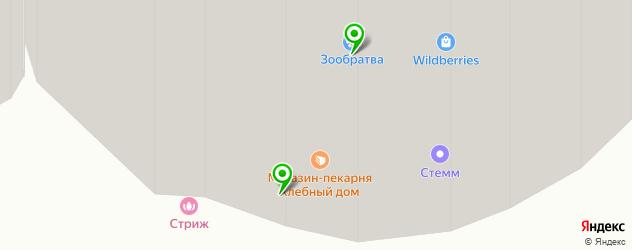 центры эстетической медицины на карте Пушкино