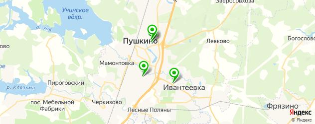 институты на карте Пушкино