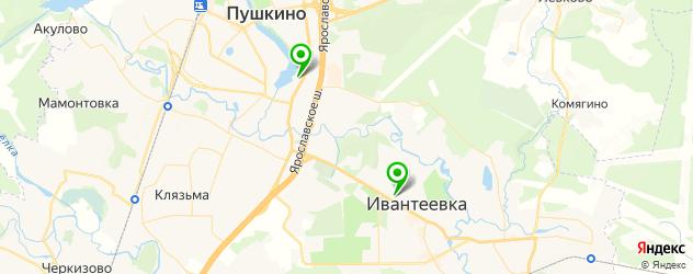 фитнесы с бассейном на карте Пушкино