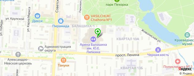 ледовые дворцы на карте Балашихи