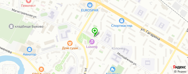 шахматные школы на карте Жуковского