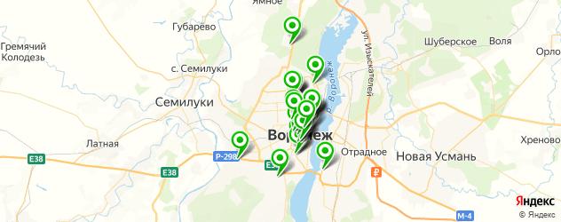 ВУЗы на карте Воронежа