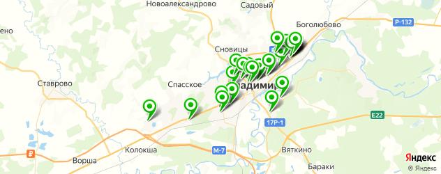 спортивные секции на карте Владимира