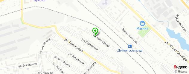 шиномонтажи на карте Димитровграда