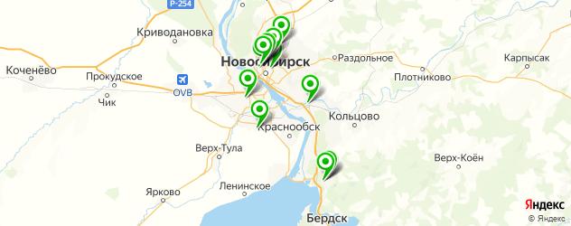 альгинатная маска на карте Новосибирска