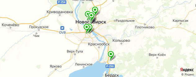 гирудотерапия на карте Новосибирска