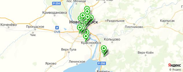 венерология на карте Новосибирска