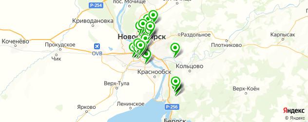 терапевтическое отделение на карте Новосибирска
