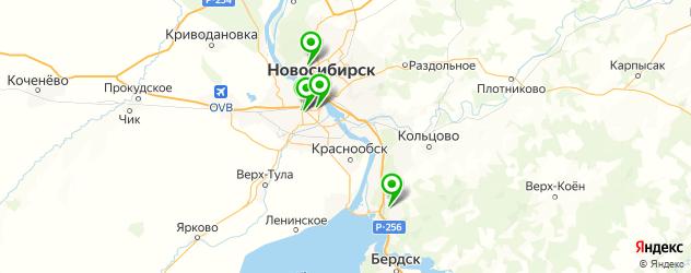 анализы на паразитов на карте Новосибирска