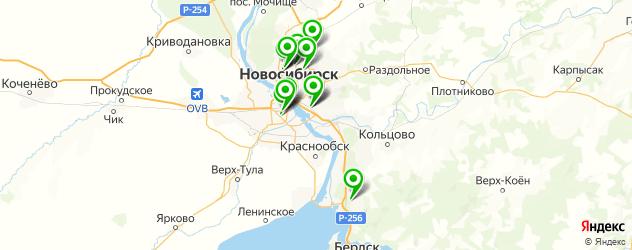 платный вызов врача на дом на карте Новосибирска