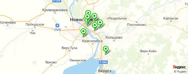 автоэлектрик с выездом на карте Новосибирска