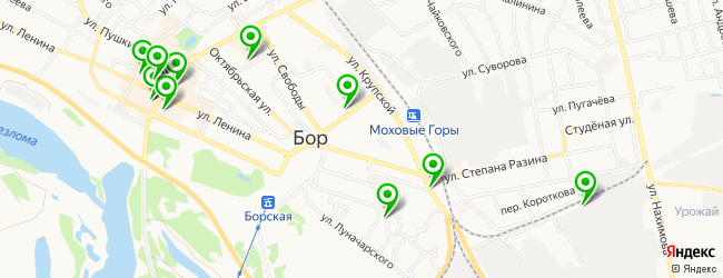 служба доставки еды на карте Бора